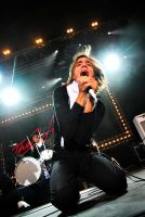 The Hives 5 by eX-Perience