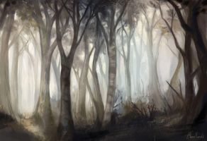 Forest by feavre