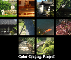 Color Cropping Project by TwistedDisaster