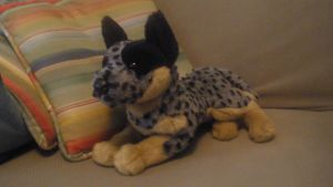 Australian Cattle Dog Plush by The-Toy-Collector