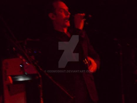 Peter Murphy, Detroit, 17 June 2014 09 by oddmodout
