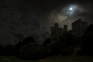 Dark castle and birds - no 1 by Sad-Fantasy