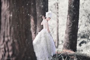 Queen of Narnia by bwaworga