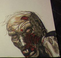zombie drawing by Cypher-Black