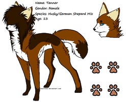Tanner reference sheet. by Hyperactive-Blue