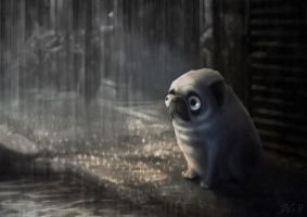Lonely Pug by juhoham