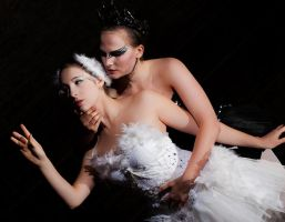 Black Swan - My Other Self by Andy-K