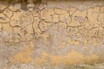 Cracked Plaster Texture 03 by goodtextures