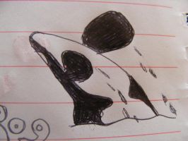 doodle orca by orcalover165