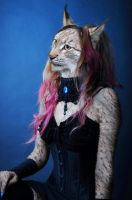 Pink-Haired Lynx by pythos-cheetah