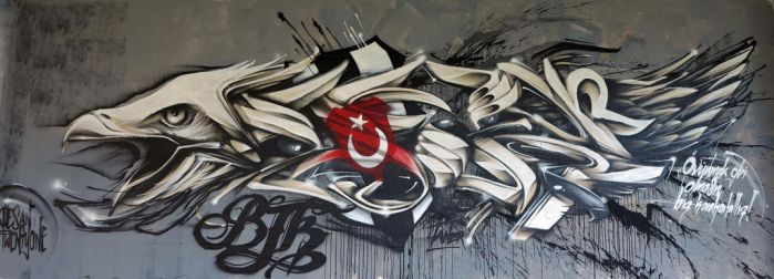 BESIKTAS wall with Video by desan21