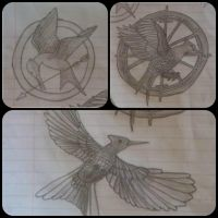 Mockingjays by HermioneFrost