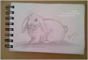 My Drawing - Bunny by h-r158