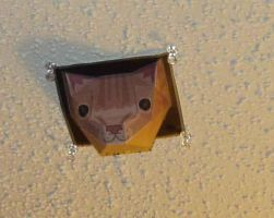 Ceiling Cat by Kaizo107