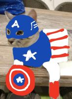 Captain Americat by Prominent-Star