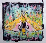 Colorful moth by eesss