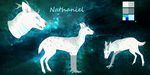 Nathaniel Ref by Silvadruid