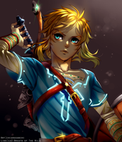 Link: Breath of The Wild by chiarasanchi