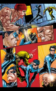 NIGHTWING IN ACTION by prie610
