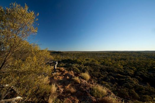 View from wave rock by JeremyRingma