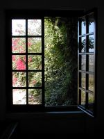 window-01 by Anya82