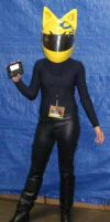 Celty :Where's Shinra? by xogirlxo78