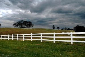 Horse Pasture by KandBphotography22