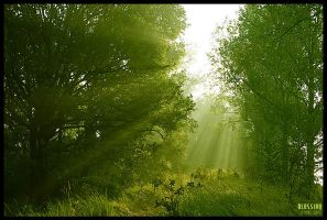 blessing by werol
