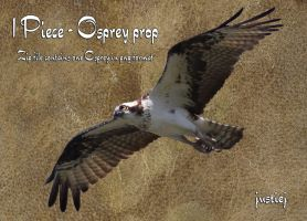 Cutout PNG - Osprey 6 by justiej
