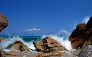 summer on the rocks by bill470