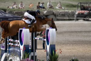 FEI WORLD CUP JUMPING 2015_BROMONT_14 by godefroy1096