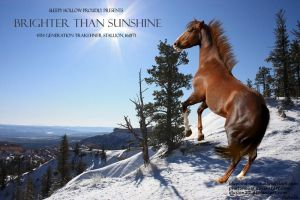 Brighter Than Sunshine by JuneButterfly-stock