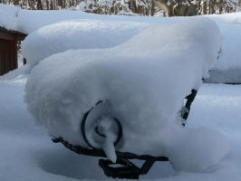 LOTS OF SNOW by PUBLIC-DOMAIN-PICS