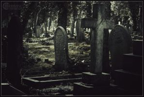 Highgate Cemetary I by RemusSirion