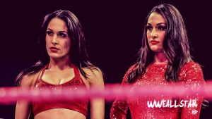 The Bella Twins (HD) by WWEAllStarHD