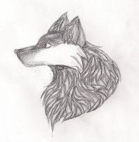 Pencil Shading Wolf by Athrunzz