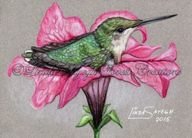 Lil' Hummer's roost by Artsy50