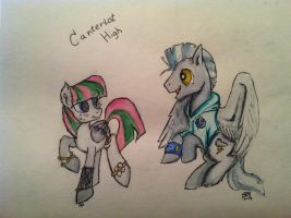 Canterlot High Thunderlane and Blossomforth by AD-Laimi
