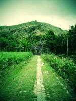 road to paradise by JONY-CAKEP