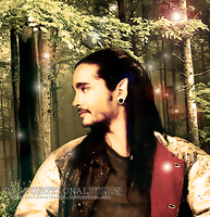 Elf Kaulitz by DysfunctionalHuman