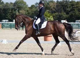 National Dressage and Jumping_38 by CalyHoney