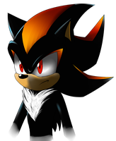 Shadow the hedgehog by Crazybandit1