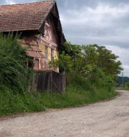 country road by Ariagne-stock