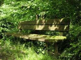 The Old Bench by X2theD