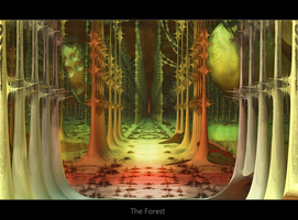 The Forest by TomRichter