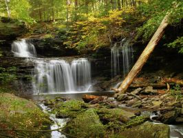 Ricketts Glen State Park 41 by Dracoart-Stock