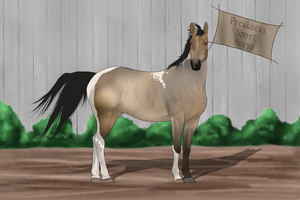 PSH Import 038 by RvS-RiverineStables