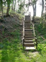 Steps in a Wood by MJ84-StockPhotos