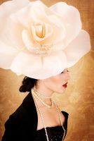 lady rose6 by magine