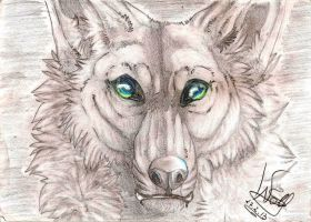 Wolf Black/White 2 by TheWolfMadness